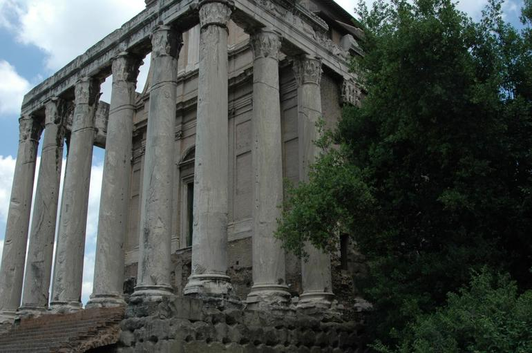 The Forum Rome Italy - Rome