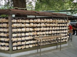 Meiji Shrine - wish list, Krishnan Vaitheeswaran - April 2010