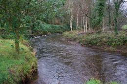 This is a shot of the river winding by Blarney Castle. The grounds were beautiful. , Robert R - January 2015