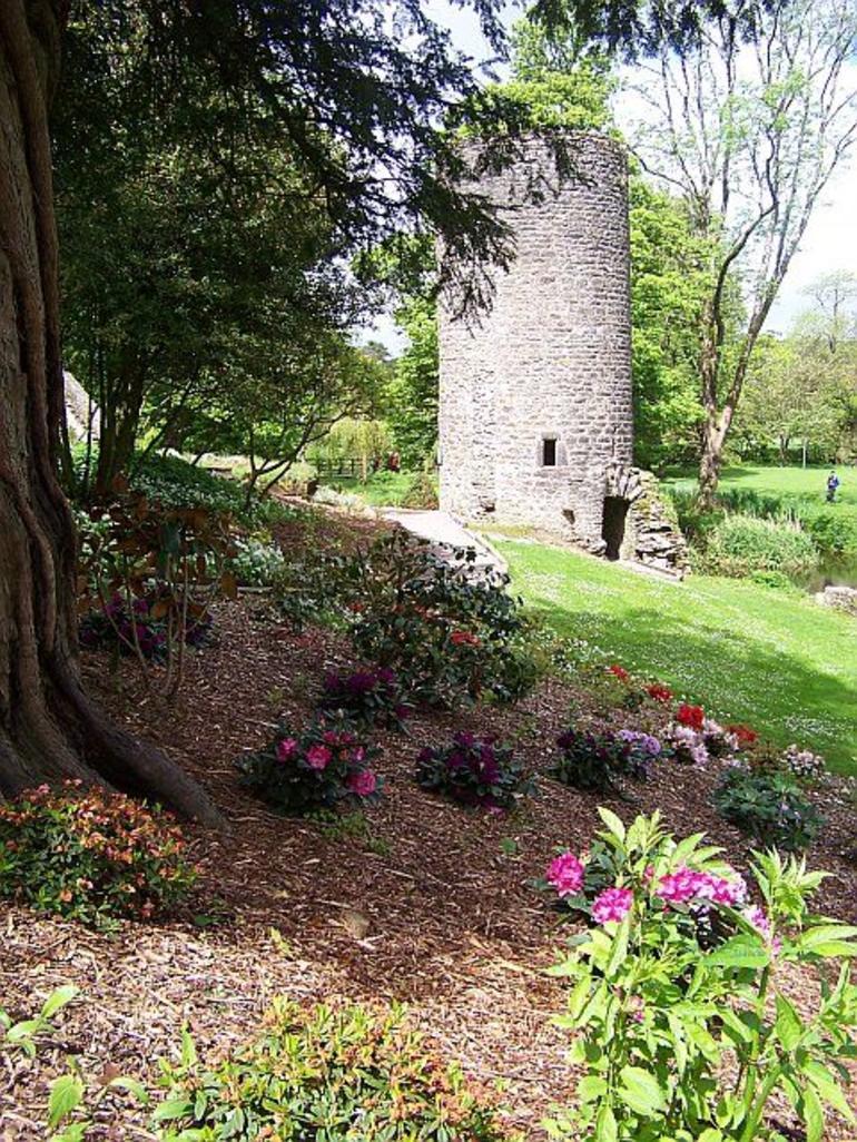 Blarney flowers - Dublin