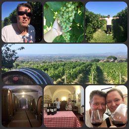 Fantastisk guidad tur med Viator, där vi fick besöka en vinodling och se hela processen. Därefter njuta av en vinprovning tillsammans med ett härligt gäng från olika..., Maria NÖ - September 2015