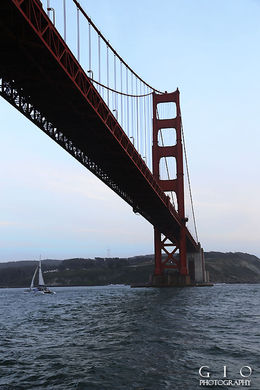 Getting to go up underneath the Golden Gate Bridge was awesome! , John S - May 2015