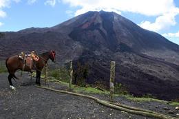 Pacaya Volcano , Sandor B - November 2017