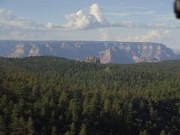 Nach einem mehrminütigen Flug über den Wald in etwa 100 m Höhe erreichten wir den Canyon-Rand. , Kathrin F - September 2013