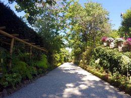 Palazzo Borromeo gardens , Fiona B - August 2016