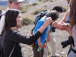 Checking out Pele's Hair around Kīlauea, Travel61 - December 2011