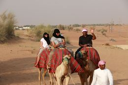 This is our camel caravan---just the three of us. , cccarol626 - July 2016