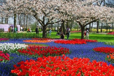 Amsterdam shore excursion keukenhof gardens and tulips for Jardin eden prairie
