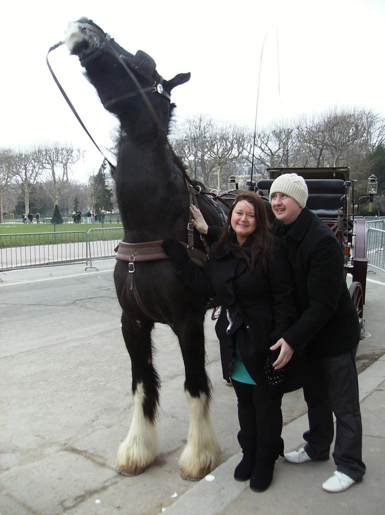 Our wonderfull horse - Paris