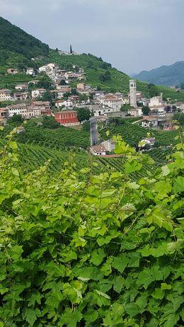 on the background, small Veneto town , chrisn - June 2015