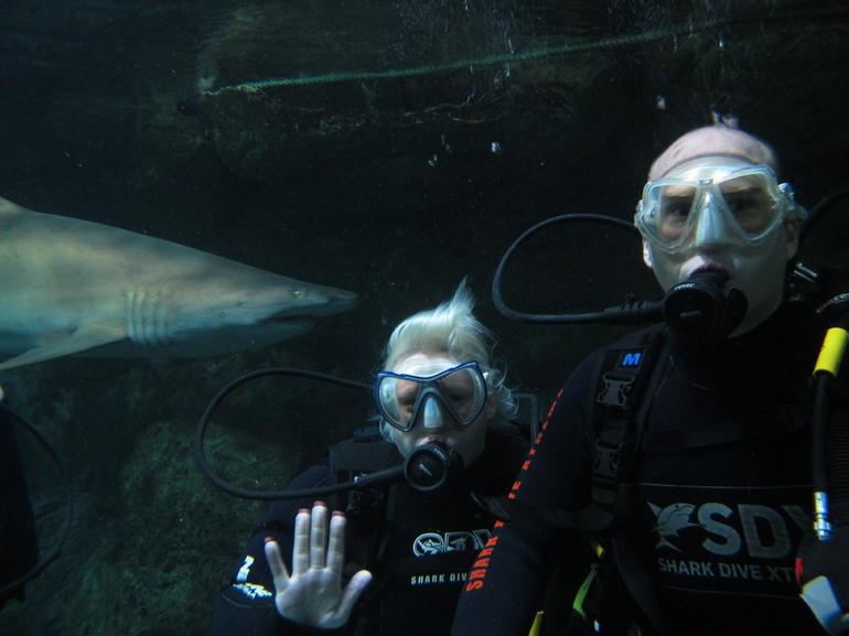 SHARK! - Sydney