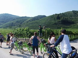 Alain giving us the history and information on the vineyards and area. , Iain J - September 2014
