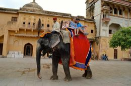 Elephant Ride.. , Adolfo Peter P - September 2015