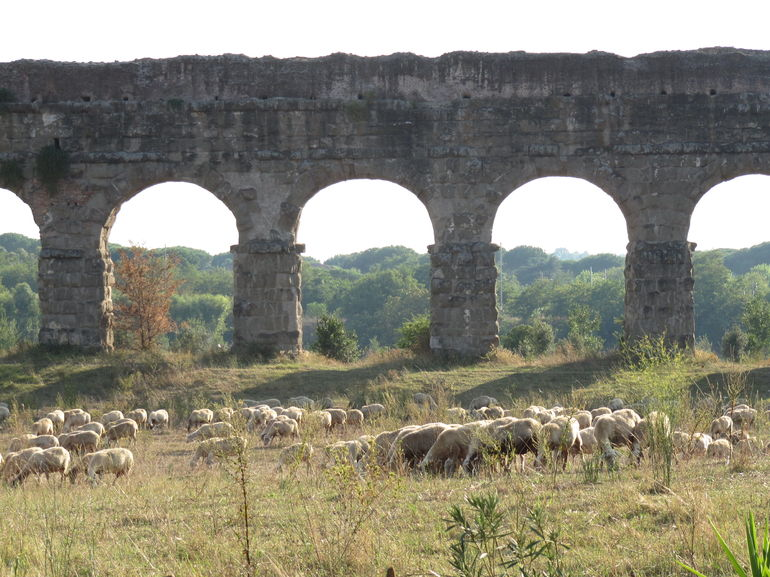 Ancient Appian Way, Catacombs and Roman Aqueducts Electric-Assist Bicycle Tour photo 26