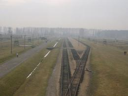 Train tracks towards the gas chambers looking from the tower. - January 2008