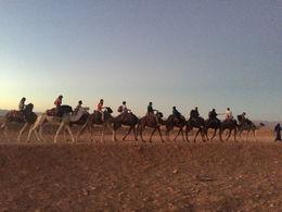 Camel ride to camp , Ian C - October 2015