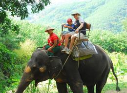 Elephant Jungle Trek: That's one happy boy riding an elephant - June 2011