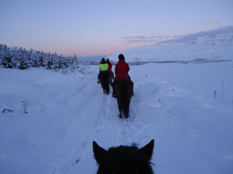Viking Horse Riding and Golden Circle Tour from Reykjavik photo 36