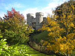 Windsor Castle through the trees , James E - October 2012
