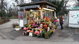 This little florists kiosk seemed to reflect the great beauty of Vienna. , John B - January 2017