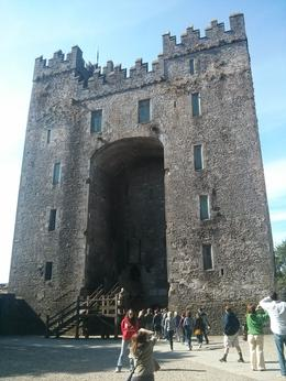 Cool Irish castle we visited outside of Limerick., kellythepea - July 2014