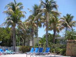 Holiday Inn Hotel - Key Largo , Stephen B - May 2011