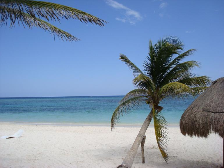 Before visiting the sea turtles - Cozumel