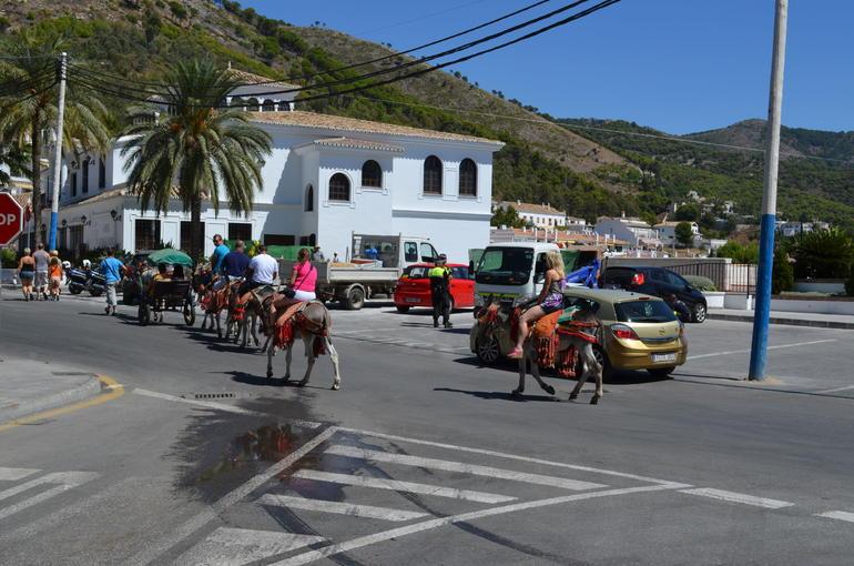 Donkey rides - Malaga