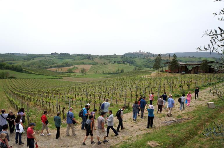 Farm near San Gimignano - Florence