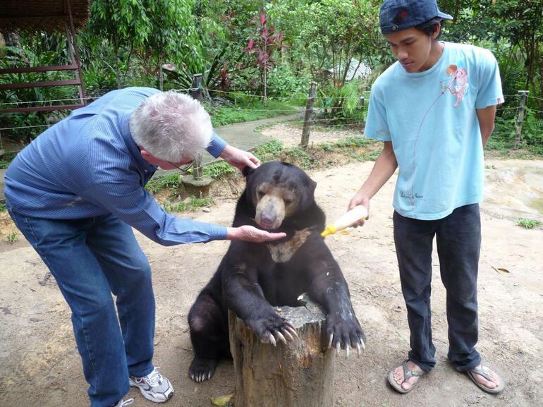 Good Bear - Kuala Lumpur