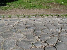 This picture shows the old Roman paving stones of the Appian Way., Gail A - March 2009