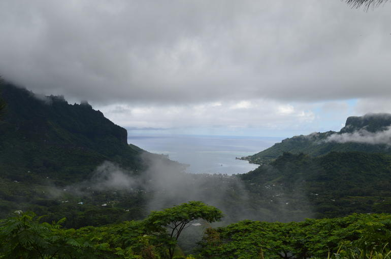 Moorea Three Coconuts Trail Guided Hike photo 10