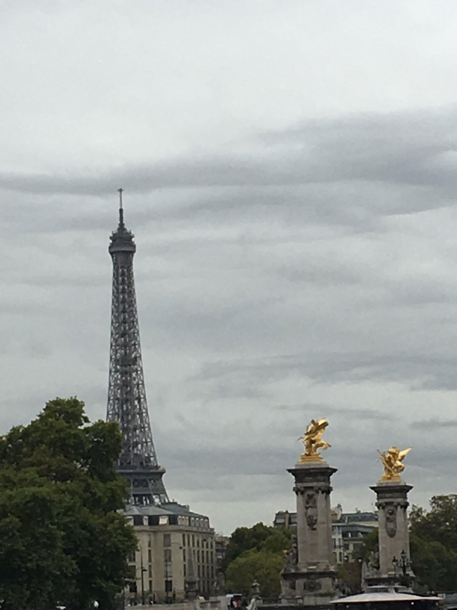 MÁS FOTOS, Escapada de un día de lujo con guía a París con almuerzo con champán en la Torre Eiffel