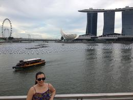 With the Singapore Flyer in the background, Cat - August 2013