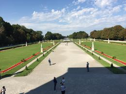 Royal Palace Garden, Dario M - November 2016