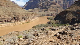 The Colorado river, mikem - March 2016