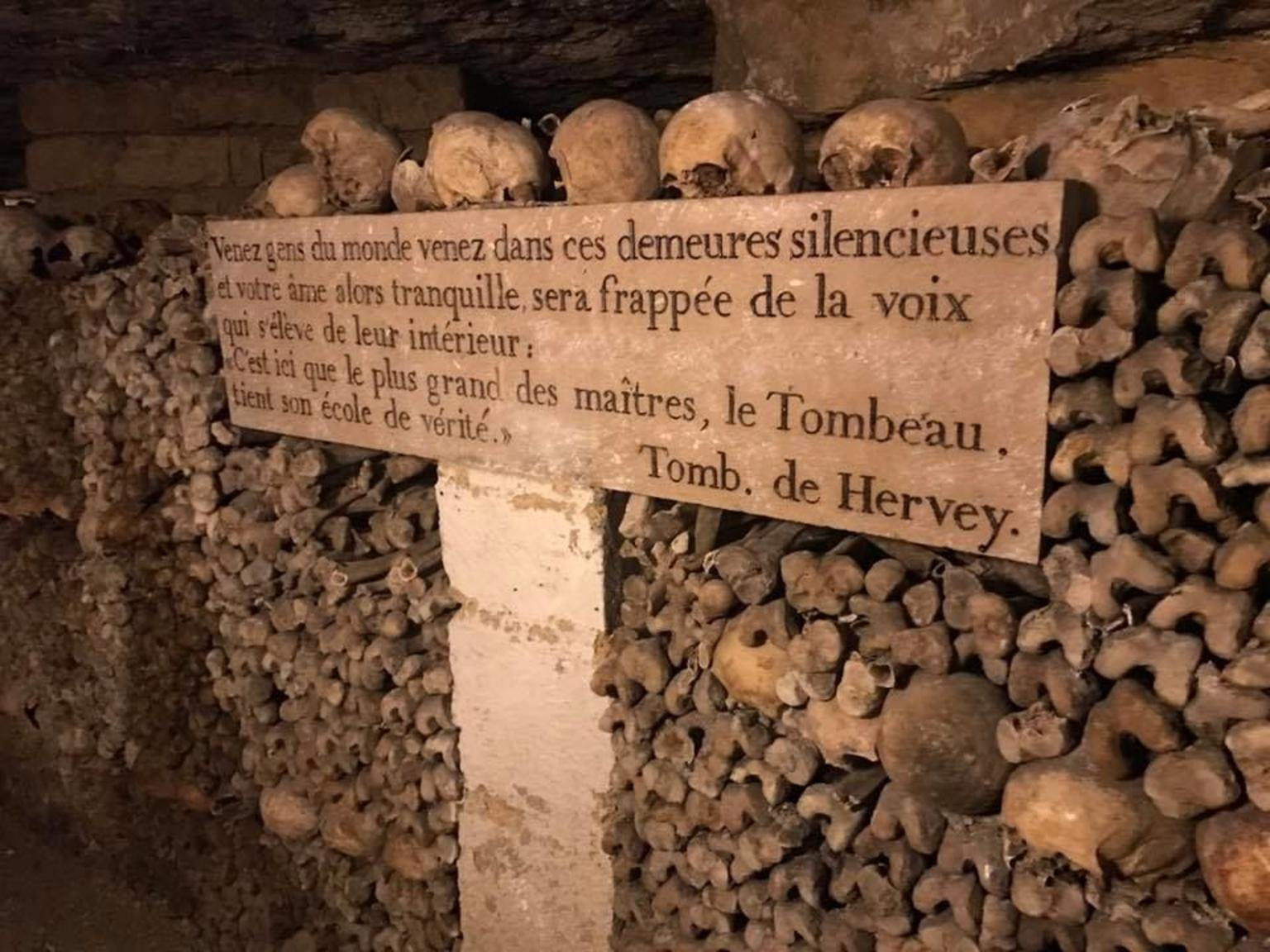 MORE PHOTOS, Group or Private Paris Catacombs Special Access Tour