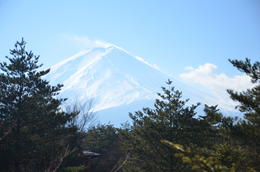 Mount Fuji as viewed from Visitors Center on 01-Jan-2014 , Karamjeet B - January 2014