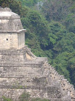 The ruins of Palenque , Kevin F - May 2013