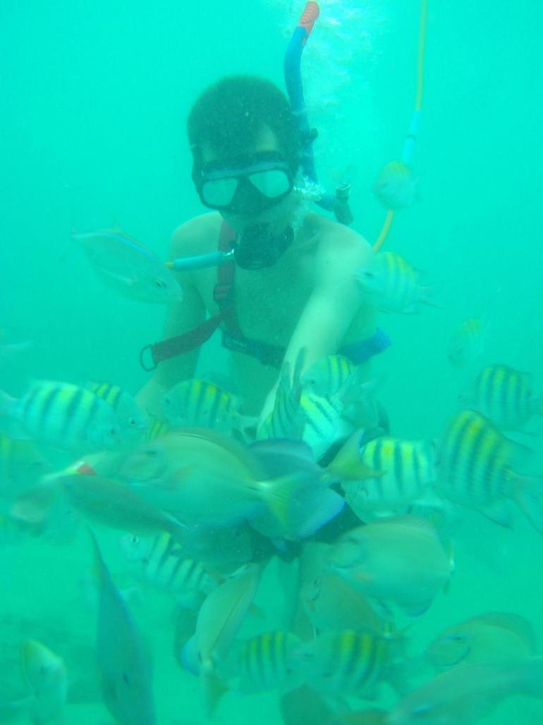 punta cana 1 109 - Punta Cana
