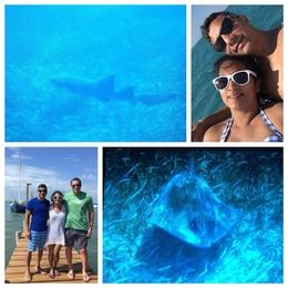 Snorkeling Shark Alley and Hol Chan and then stopping in Caye Caulker. , Sajani - November 2016