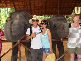 w/ Baby Elephants , Stanley C - March 2011