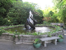 Fountain in the gardens , Natalie D - June 2015