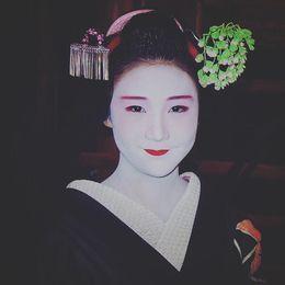 Geisha , Elisha P - November 2015
