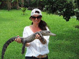 Nadine aux Everglades , NADINE B - June 2015