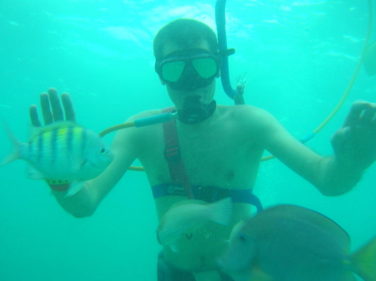 Snorkeling off Bavaro speedboat, Punta Cana - Punta Cana