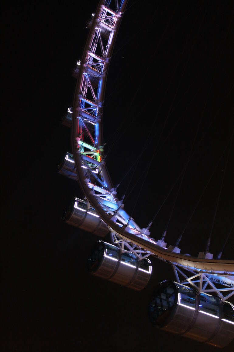 View of the Singapore Flyer from the ground - Singapore