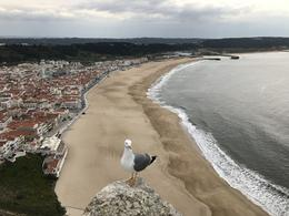 Nazare cliffview , Christine X - March 2017