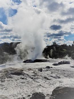 Rotorua geyser , Jeanette D - November 2017
