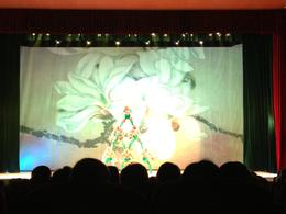 Chinese acrobats, Cat - August 2012